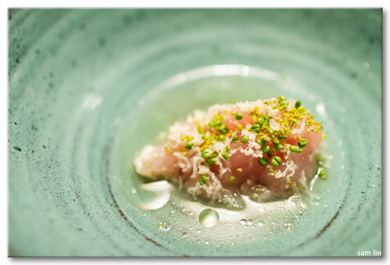 Albacore Tuna Scraped by a Scallop Shell